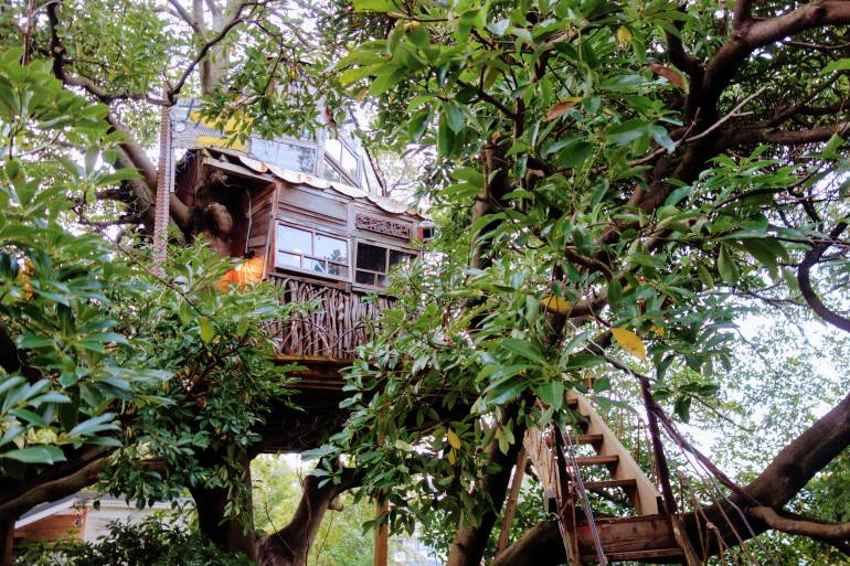Nanjya Monjya tree house cafe