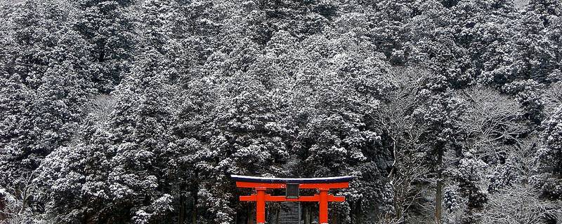 A 3-Day Winter Itinerary for Tokyo