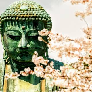 Kamakura and Enoshima on a 1-Day Tour from Tokyo