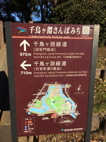 Chidorigafuchi Park walking circuit