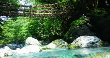 Iya Valley Vine Bridge Water