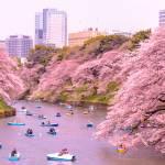 kitanomaru park
