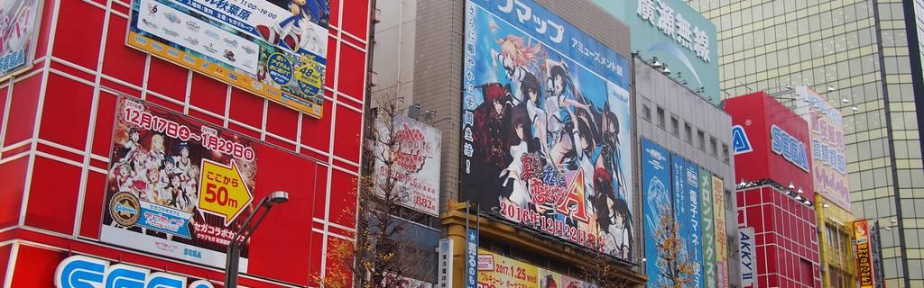Maids, Karaoke and More: Experience Akihabara Tour
