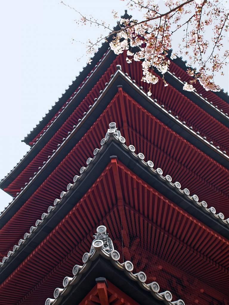 ikegami plum park tokyo