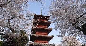 Honmonji Ota