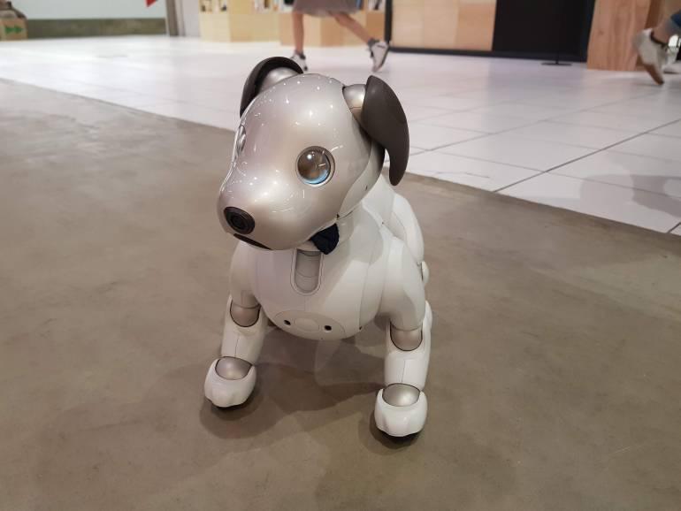 Aibo Sony Robot Dog
