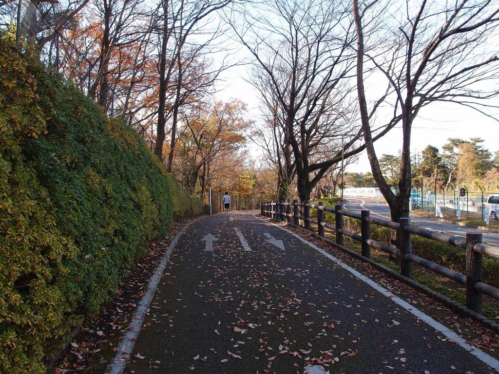 tokyo cycle routes