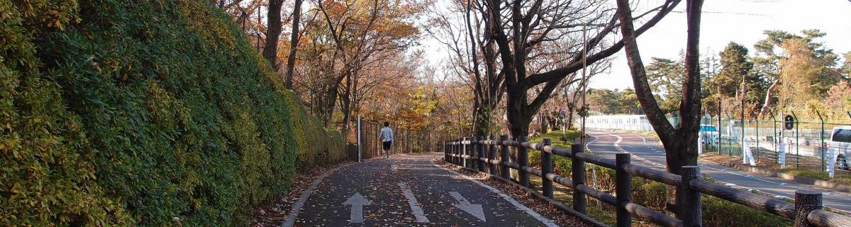 3 Tokyo Cycle Routes to Explore City, Nature and Everything In Between