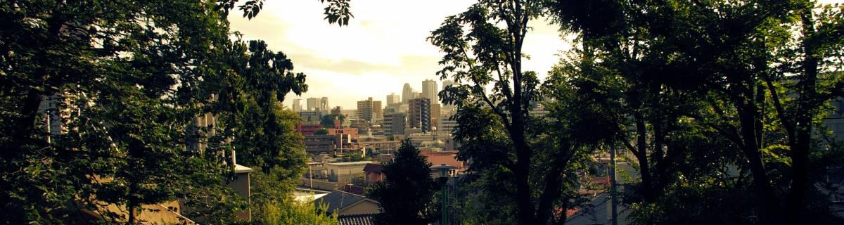 Tokyo by Foot: Mejiro Walking Guide