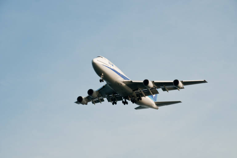 ana plane in flight