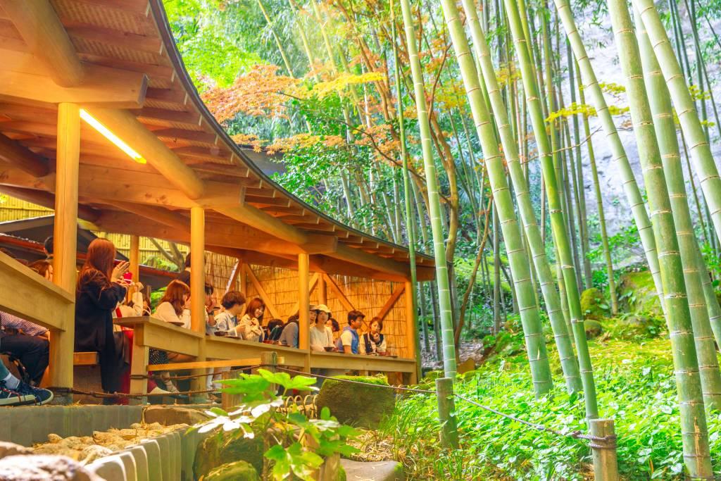 Hokokuji temple Tea and Bamboo