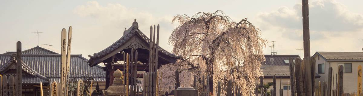 Yanaka: Old Town Tokyo at Its Best