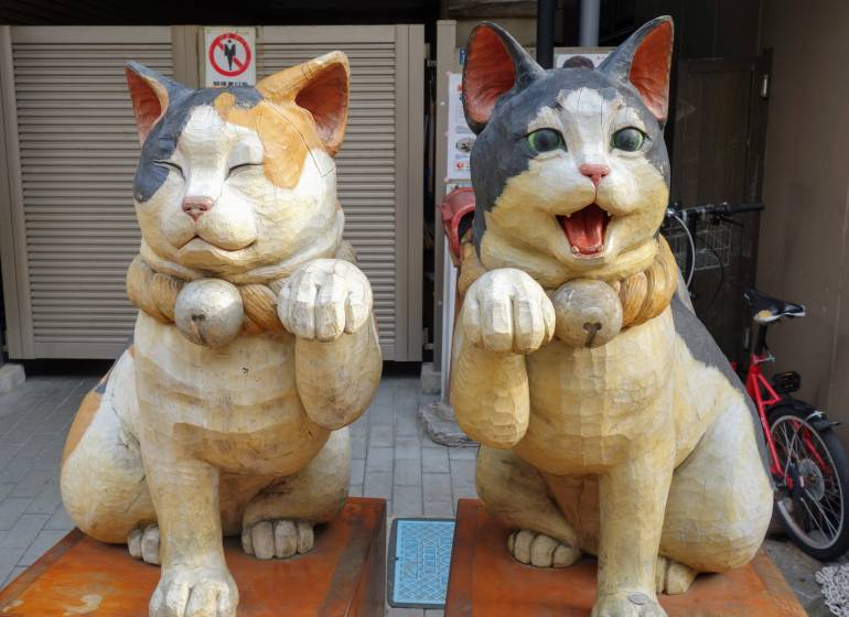 what to do in tokyo during COVID-19 Yanaka Cats