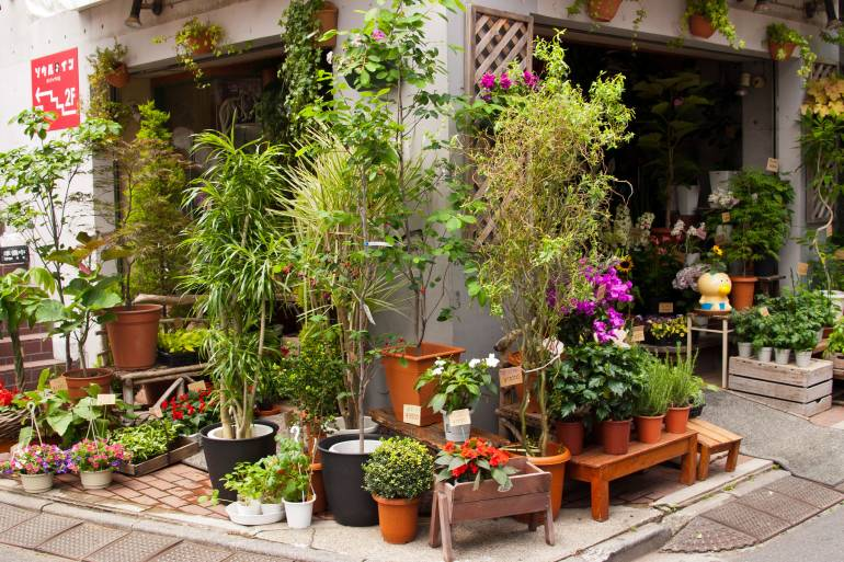 Tokyo Garden Shops, Supplies and Inspiration for Your Own Urban Farm ...