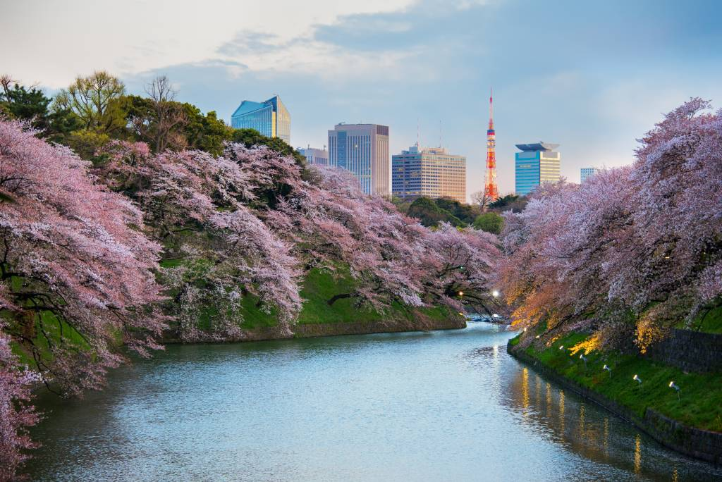 Kitanomaru Garden, Tokyo, Japan