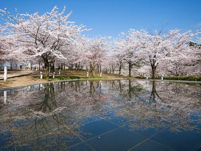 Niigata Hakusan Park
