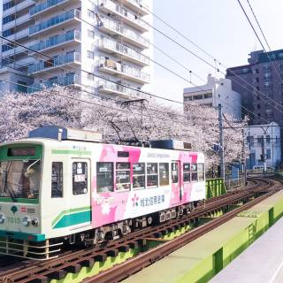Tokyo Trainspotting Guide: Choose Your Views
