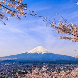 See Mt. Fuji, Shop, and Relax in a Hot Spring