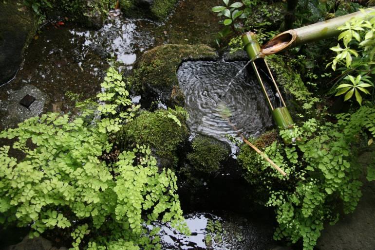 Traditional Tokyo garden
