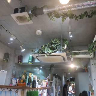 Little Bird Cafe