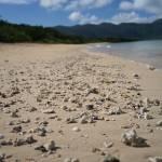 Ishigaki sand