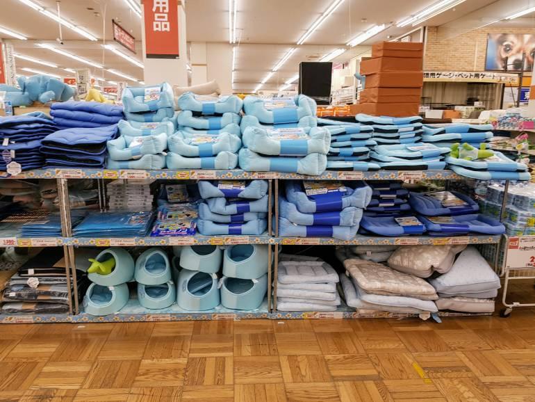 A range of dog beds