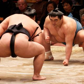 Meet Sumo Wrestlers and Enjoy Chanko Nabe