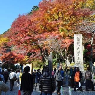 Mt. Takao Autumn Leaves Festival