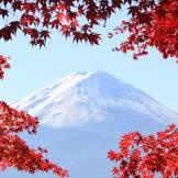 Tokyo bus tours to Fuji