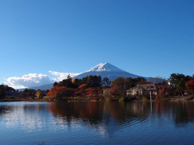 Fuji Autumn Koyo