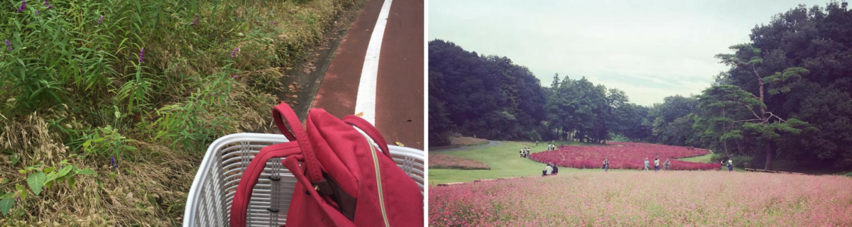 Crowd-Free Cycling at Saitama's Shinrin Koen Cycle Course