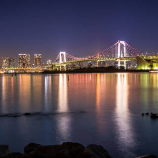 New Year's Eve Countdown Cruise in Tokyo