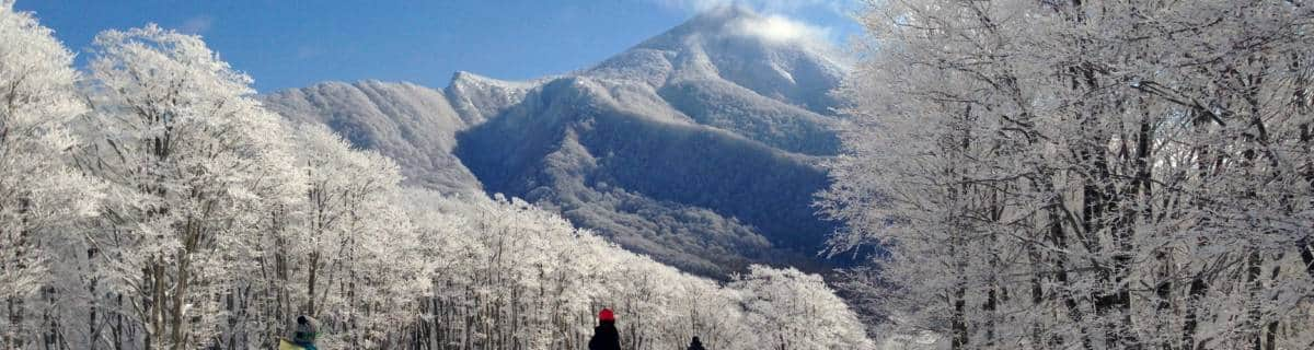 Japan Ski Resorts: How and Where to Hit the Slopes near Tokyo
