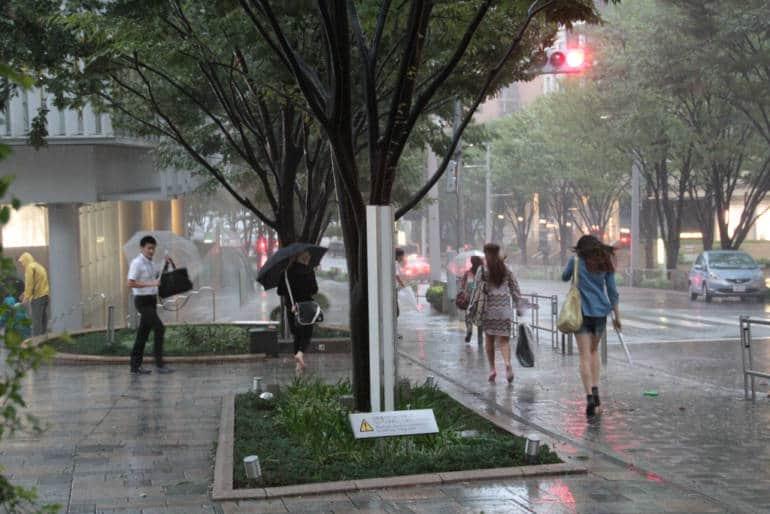 Typhoon Tokyo