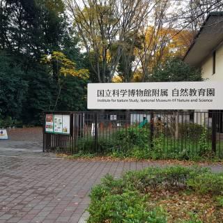Institute for Nature Study