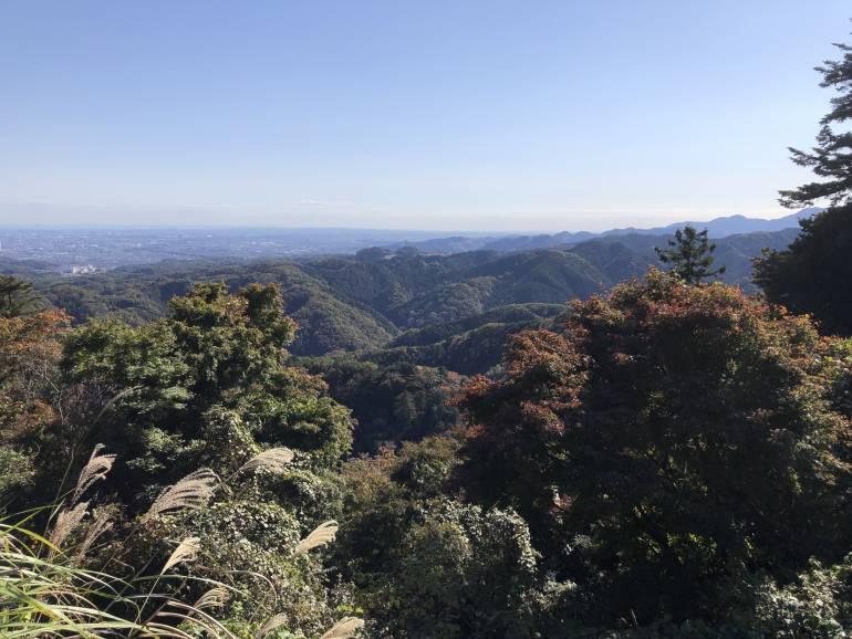 autumn colors on takao-san
