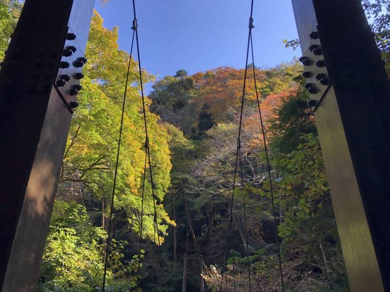 suspension bridge mt takao