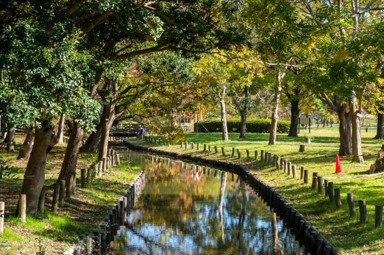 mizumoto park picnic spots in tokyo