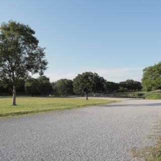 Musashinomori Park