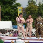 Naki Zumo Crying baby Festival