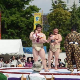 Nakizumo Crying Baby Festival