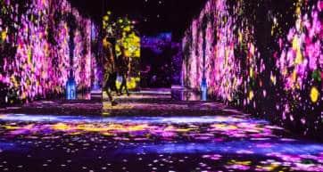 Mori building digital art museum - teamlab borderless