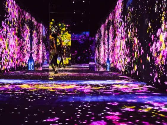 Mori Building Digital Art Museum: A Multi-Sensory Experience | Tokyo