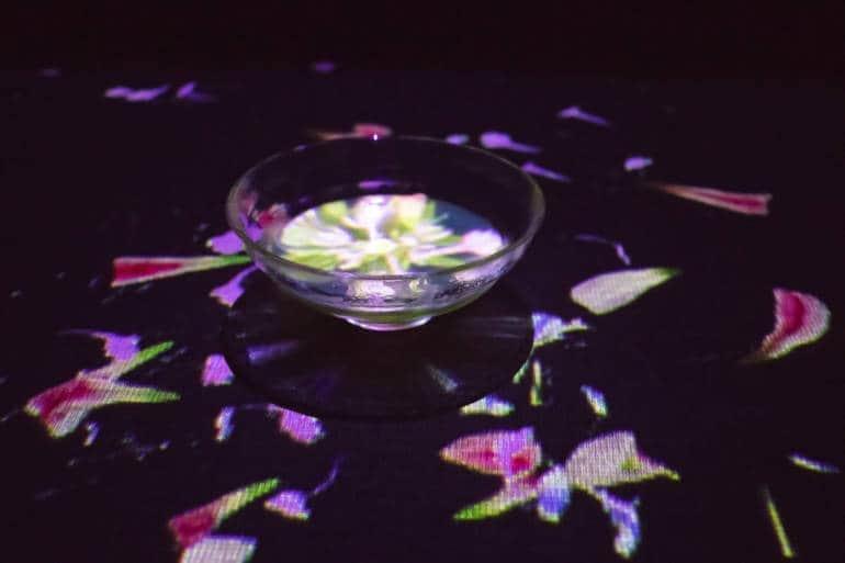 Digital Art Museum Tokyo - teamLab En Tea House