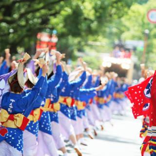 Dream Yosacoy Festival