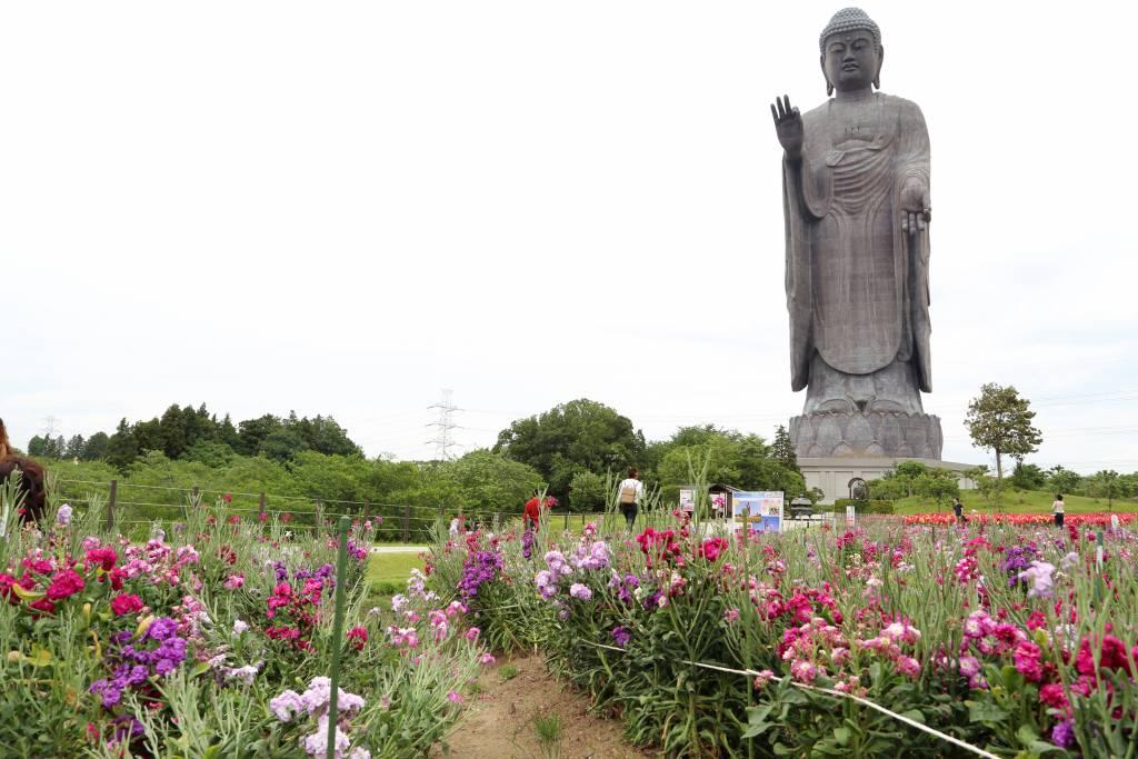 buddha statue in Ibaraki