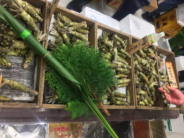 toyosu market wasabi