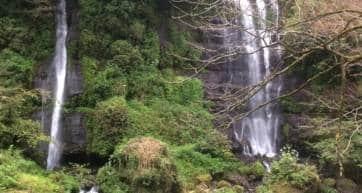 Taro Jiro Waterfalls