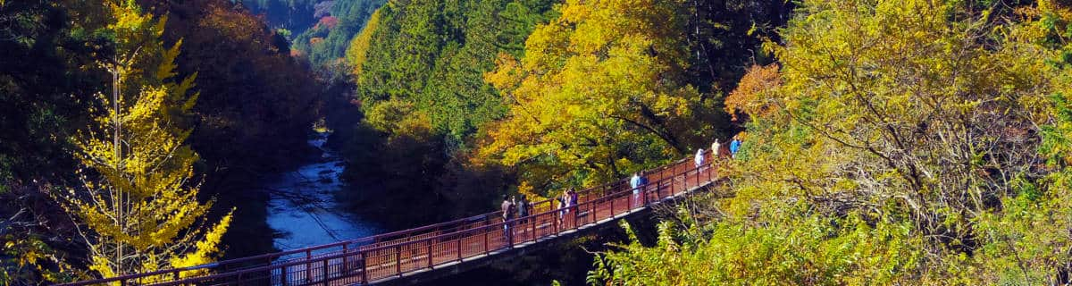 Akiruno: A Nature-Filled Escape Just Outside Tokyo