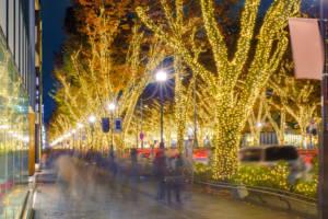 Omotesando Winter Illuminations